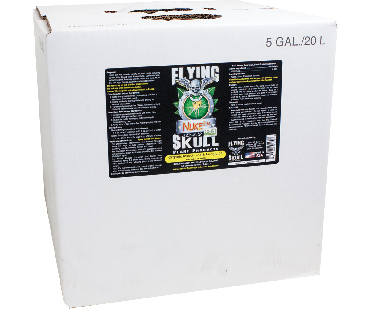 Flying Skull Nuke Em 5 Gallon