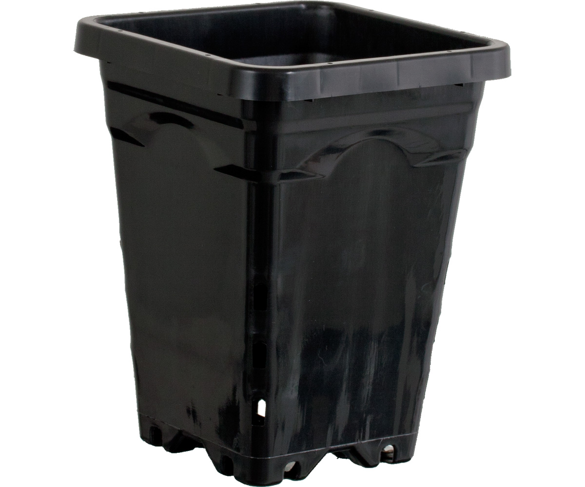 Active Aqua 5 x 5 Square Black Pot - 7 Tall - Case of 100