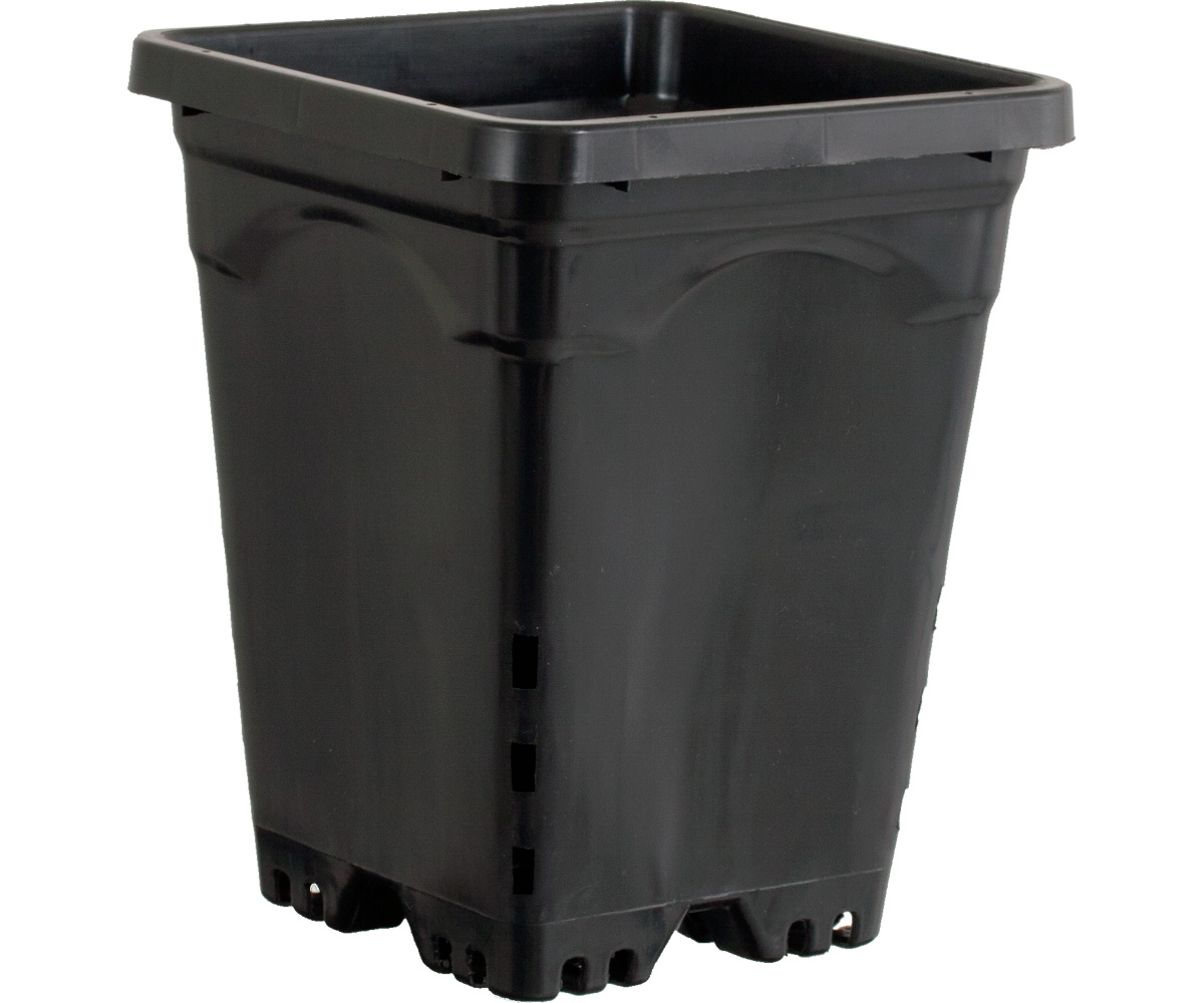 Active Aqua 6 x 6 Square Black Pot - 8 Tall - Case of 50