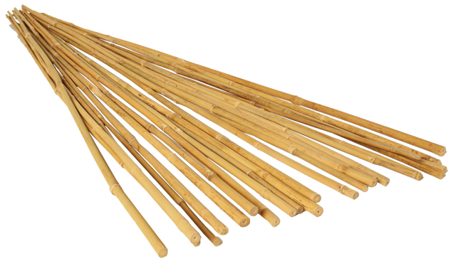 HydroFarm 8 Foot Bamboo Stakes Natural Pack of 25