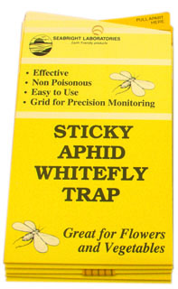 Seabright Laboratories Sticky Whitefly Trap 5/Pack