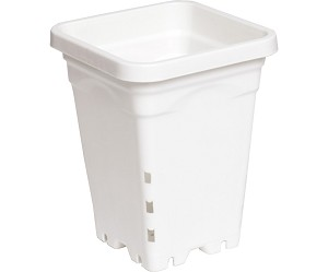 Active Aqua 5' x 5' White Square Pots - 7' Tall - Case of 100