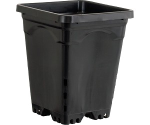 Active Aqua 7 x 7 Square Black Pot - 9 Tall - Case of 50