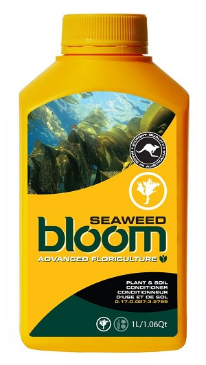 Advanced Floriculture Bloom Yellow Bottle SEAWEED 1 Liter